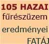 105 hazai furészüzem gazdasági teljesítménye - 2010. - Megvizsgáltunk 105 hazai furészüzemet muködteto vállalkozást (60 kemény-lombos, 44 lágy-lombos, 1 fenyo-feldolgozó) a 2010-es évi teljesítményei alapján.